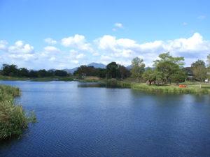 熊本市の江津湖の写真