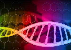 DNAの画像